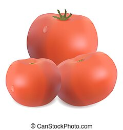 three tomatoes - Three tomatoes isolated on white Vector...