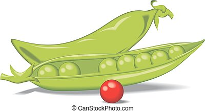 green pea isolated