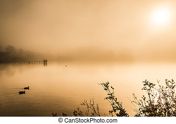 Misty early morning lake in autumn