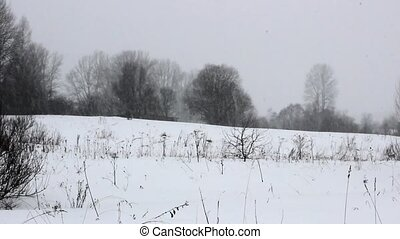 Heavy snowfall in the field. In the background is abandoned...