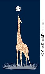 coloured giraffe - natural coloured giraffe with background...