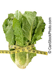 Skinny Romaine - head of romaine lettuce and tape measure...