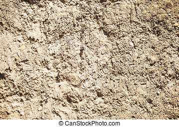Wall for background or texture of mud baked in the sun