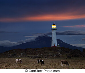 Cape Egmont Lighthouse, New Zealand - Cape Egmont Lighthouse...