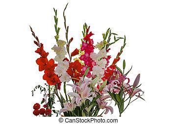 rosa, blanco, amarillo, rojo, Gladiolas, y, Lirio, flores,