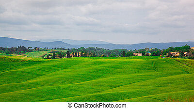 beautiful summer landscape with wavy hills. Tuscany Italy