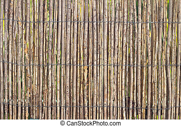 Stick Fence - A pattern created by a fence made with a few...