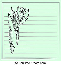 Graphic flower, sketch of tulip on green background Vector...