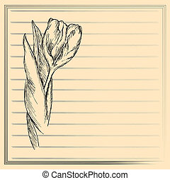 Graphic flower, sketch of tulip on creamy background Vector...