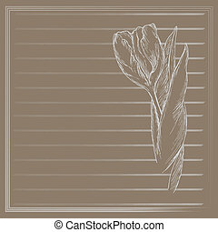 Graphic flower, sketch of tulip on beige background Vector...