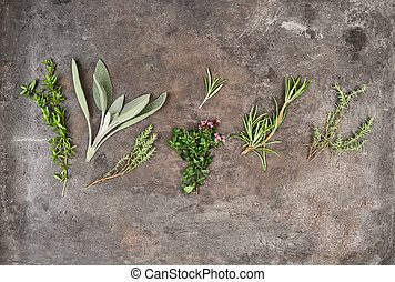Herbs rosemary, sage, thyme, savory