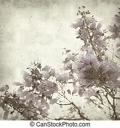 textured old paper background with lilac jacaranda flowers