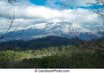 The Snowcaps on the Mountain - Daytime photo of a...