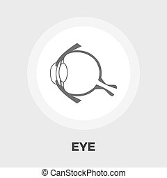 Anatomy eye flat icon - Anatomy eye icon vector Flat icon...