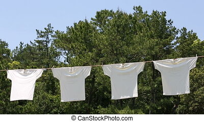 White t-shirts hanging to dry - White t-shirts hanging on...