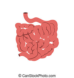 Small intestine icon