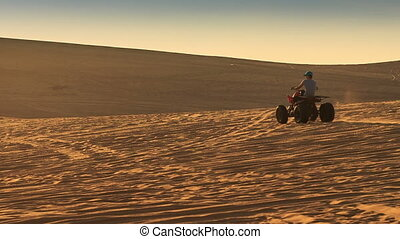 Quad Runs Toward Horizon in Sand Dunes at Sunset - quad runs...