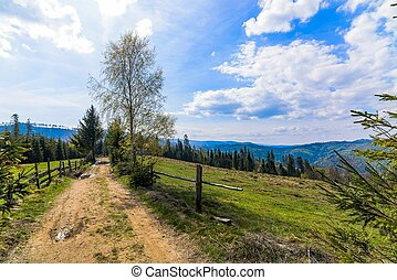 Dirt road in Silesian Beskid mountains, spring.