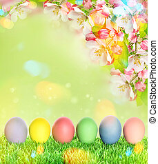Easter eggs with apple tree blossoms green grass