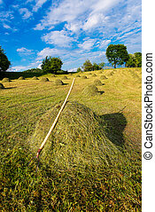 Bales of hay ready handmade with rake - Bales of hay With...