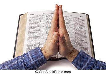 祈禱, 在上方, 聖經, 打開, 手