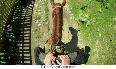 Astride on horse summer - View from rider when riding on...