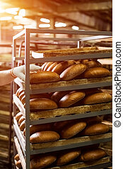 Brown bread loaves on rack. Hand touching bread on shelves....