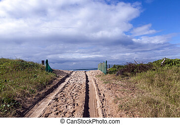 Beach Access Road and Tire Tracks on Sand Dune - Beach...