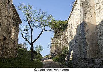 Footpath with Overhanging Tree, France