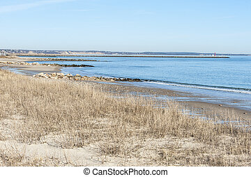 Southern end of Cape Cod Bay