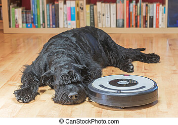 Hairy dog and the robotic vacuum cleaner