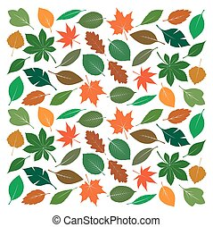 Composition of Color Leafs Vector Illustration