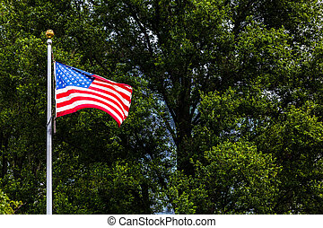 American flag in Boston park during spring time