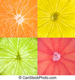 Citrus Fruits - Image contaning close ups from...