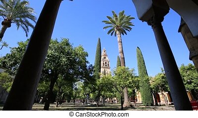 Bell tower in the background - Inside the mezquita a...