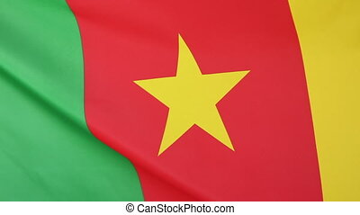 Flag of Cameroon in slow motion - Textile national flag of...