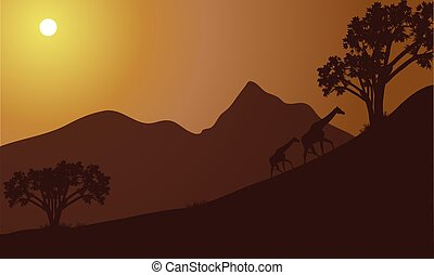 Giraffe silhouette on the hill at the morning