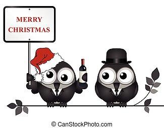 Merry Christmas - Drunken bird reveller at the office party...