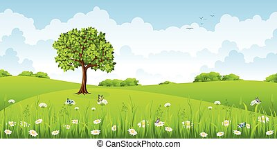 Summer landscape with flowers and butterflies