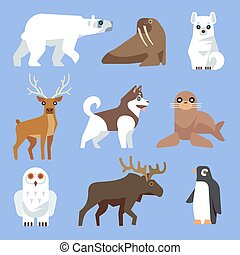 North Arctic or Antarctic animals and birds Vector flat...