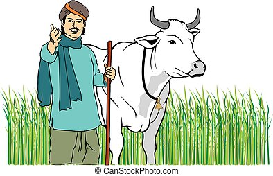 Indian Farmer with cow in field