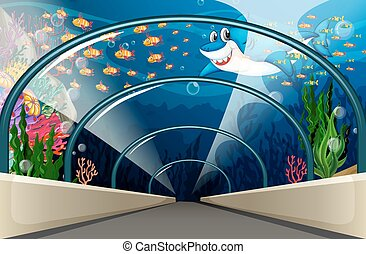 Public Aquarium with fish and coral reef
