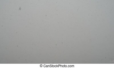 The shot of snow falling