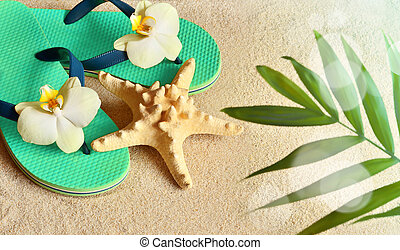 Flip Flops in the sand with starfish . Summertime. beach concept.