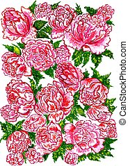 Pink Peonies Watercolor - Bright pink peonies with green...