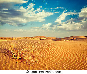 Dunes of Thar Desert, Rajasthan, India - Vintage retro...