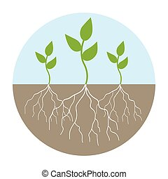 Graphic illustration of young trees with root