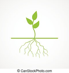 Graphic illustration of young tree with root