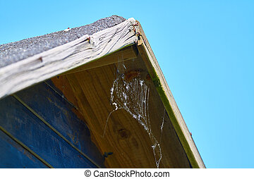 roof - Old roof of a wooden hut with cobweb.