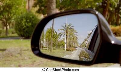 Road lined with tropical palm trees reflected in the side...